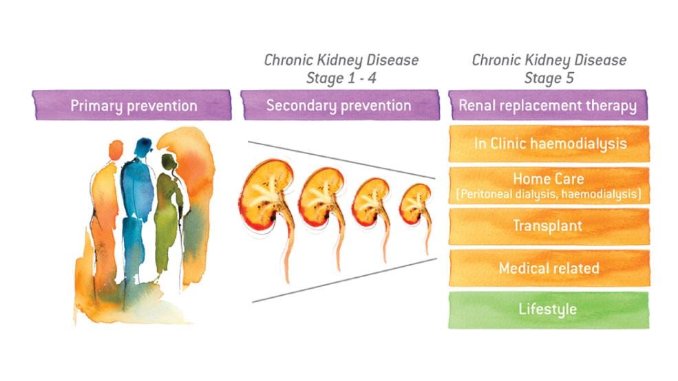 CKD Chronic Kidney Disease